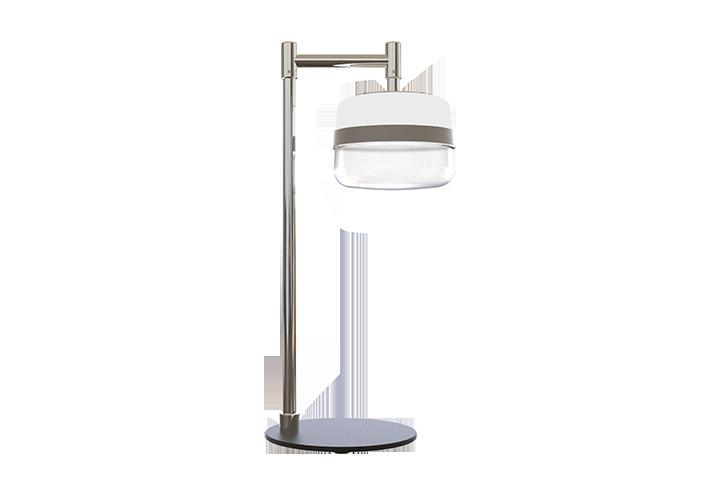 Mult Task Lamp Show